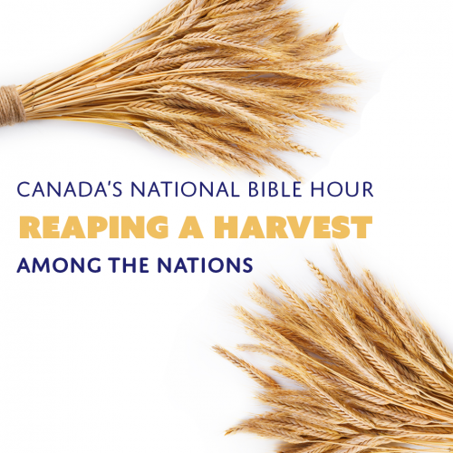 Reaping a Harvest - CNBH